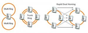 multiring-trunkring-rapiddualhoming